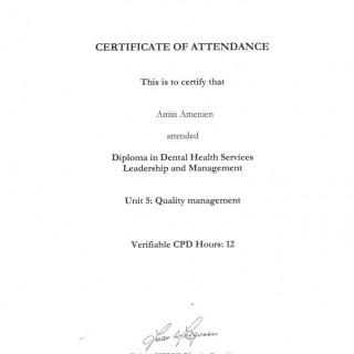 1 Dr Amin Amenien RCS Quality management Diploma course 2010
