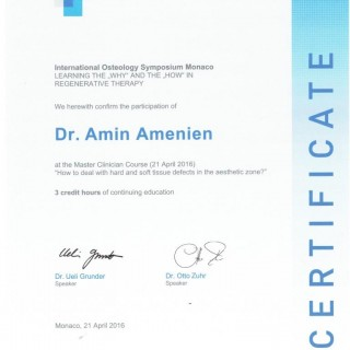 9 Dr Amin Amenien Osteology Master clinical course 2016